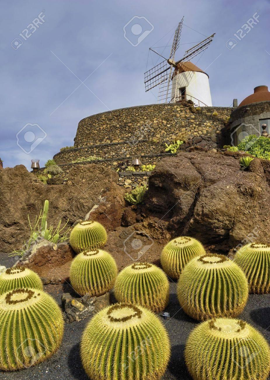 scenic view of cactus garden and windmill jardin de cactus guatiza lanzarote