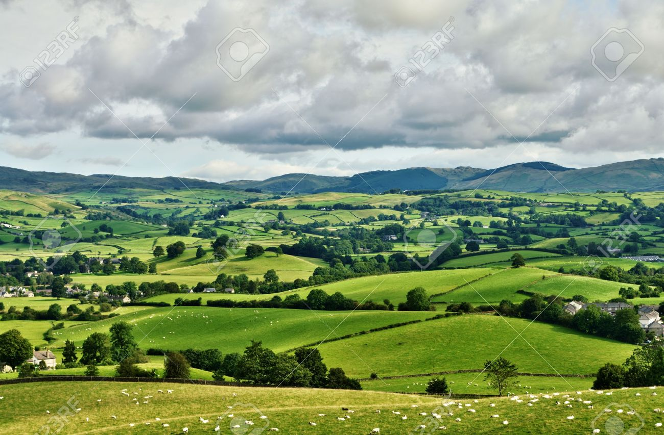 Pastoral scene of lush green English farmland Stock Photo - 15938222