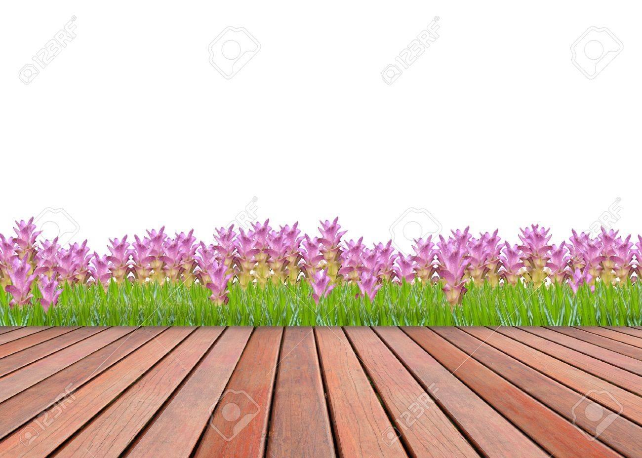 Siam Tulipán Rosa Jardín Y Terraza Textura De Madera