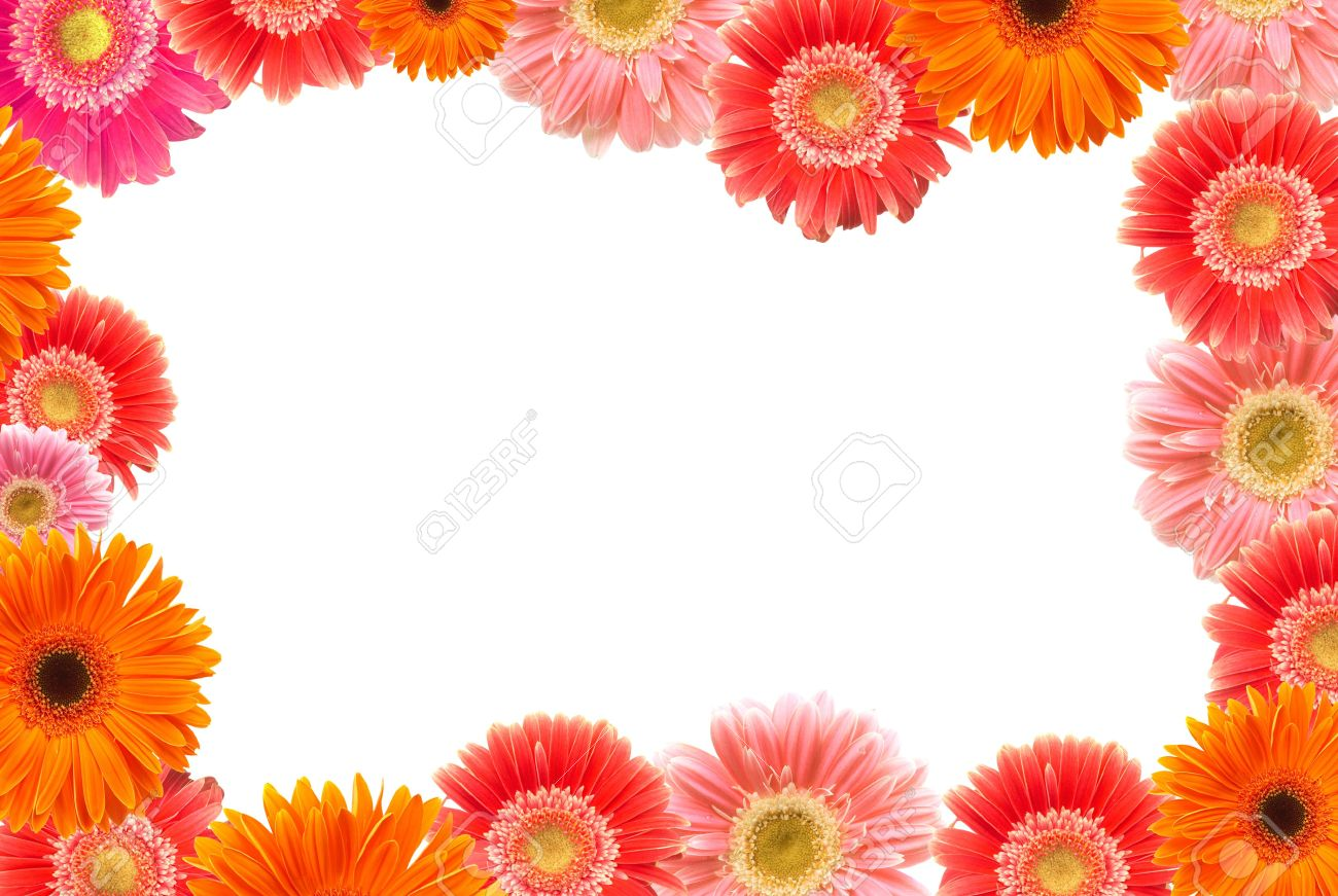 Daisy Flowers Frame Space For Messages All Flowers From