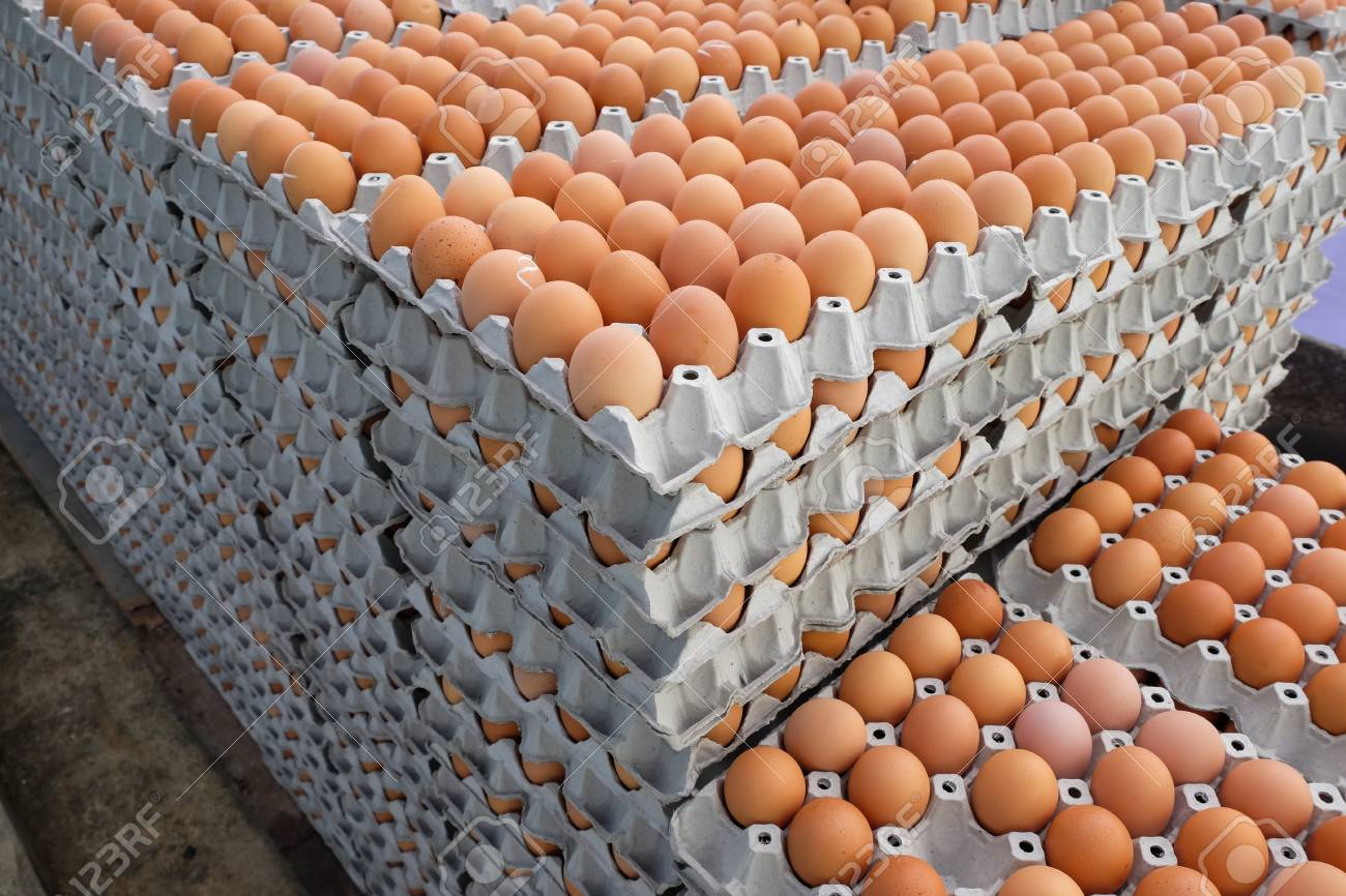 Eggs in the package Standard-Bild - 46785264