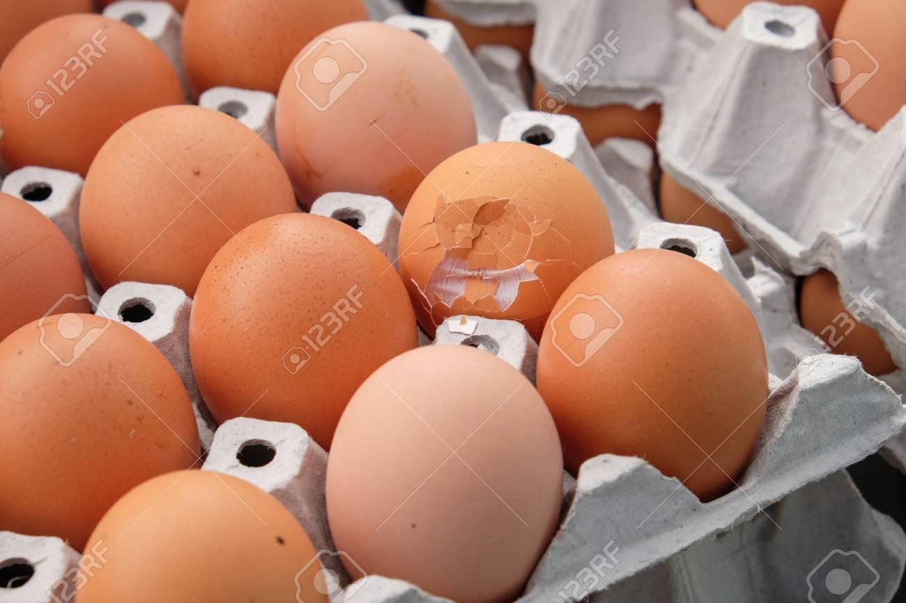 Egg, Chicken Egg Standard-Bild - 46785273