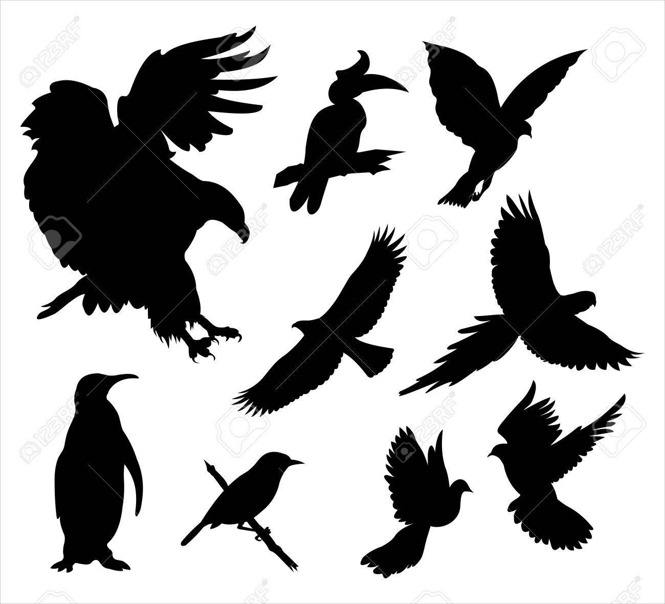 Bird silhouette - 10675946