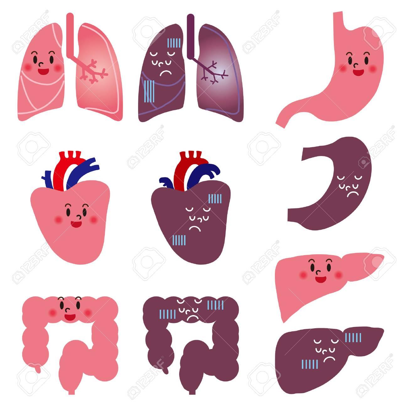 Character of human organs Stock Vector - 25513668