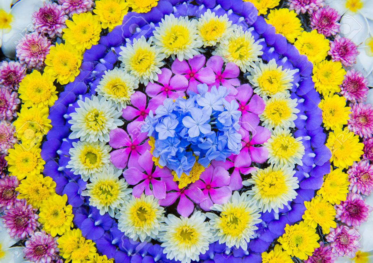 The Variety Flowers Arrangement For Decoration Stock Photo