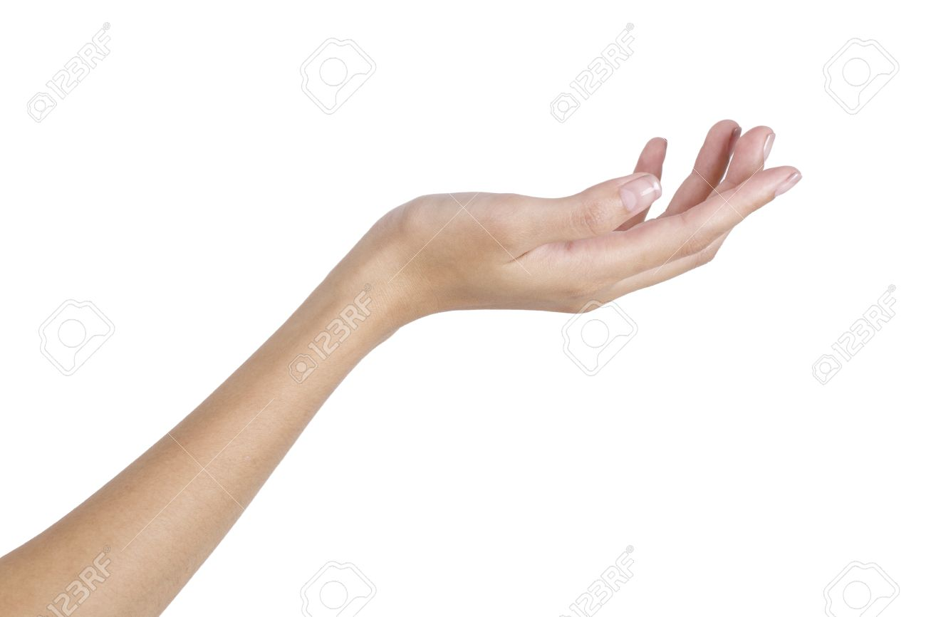 a8b8499ee8479 Stock Photo - Woman's hand holding something empty,back side, isolated on  white background.