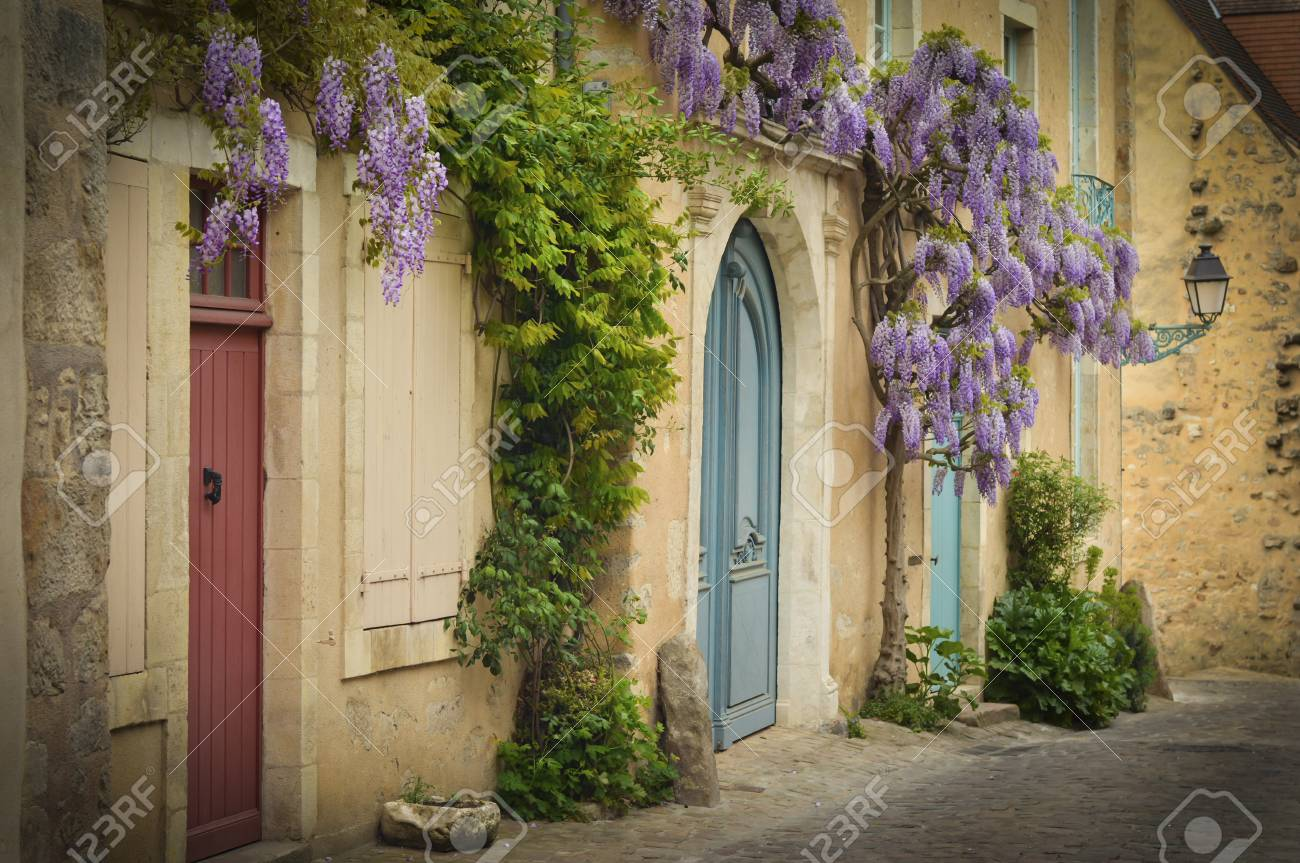Old Wooden French Doors With Climbing Wisteria Hanging On The