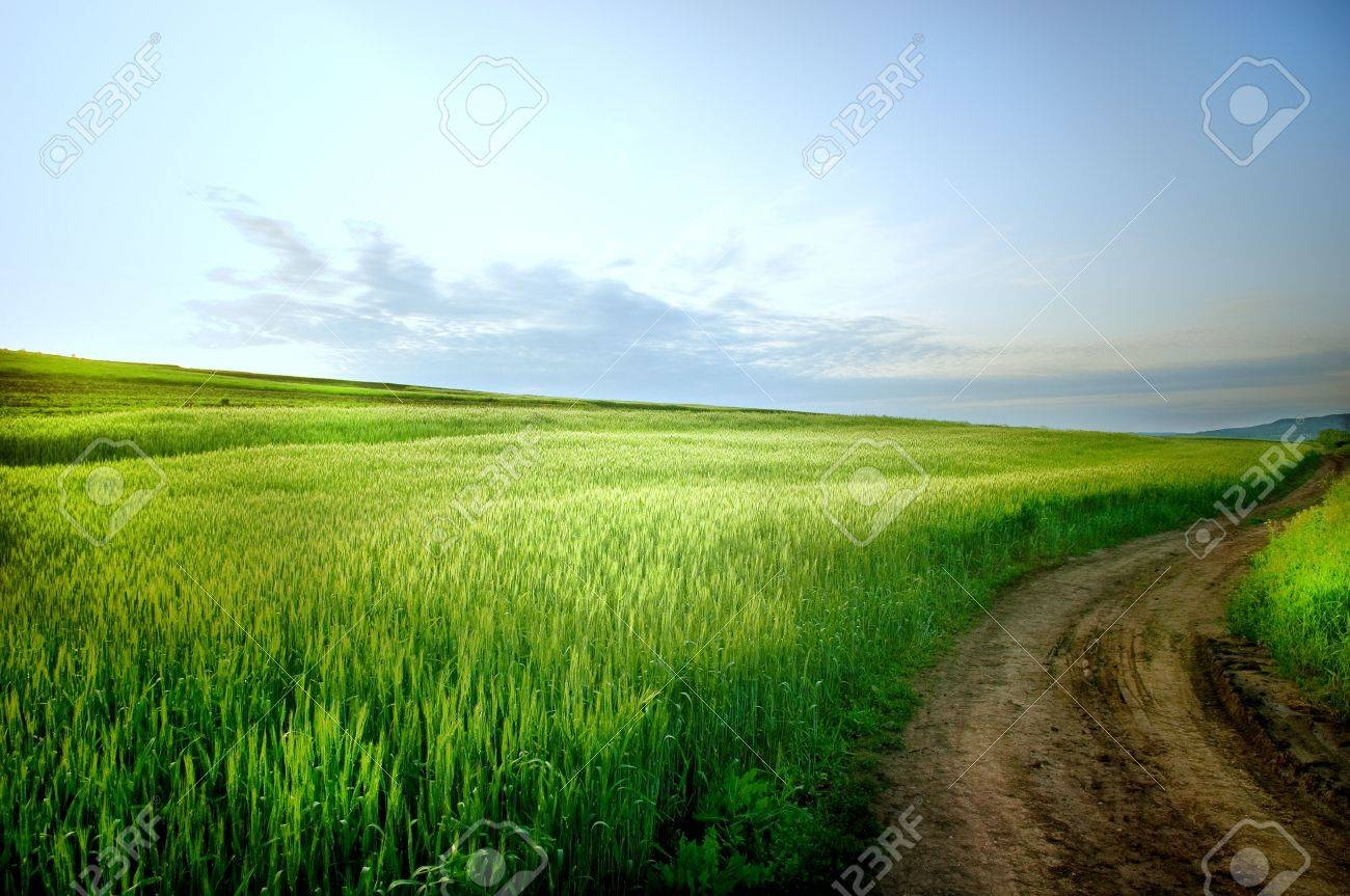 Rural landscape with road and blue sky - 3116955
