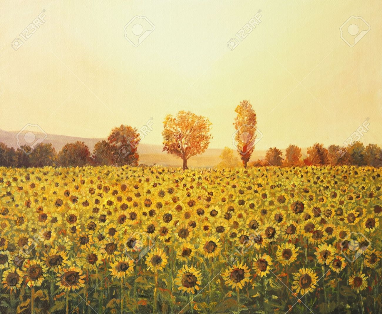 Sunflowers Field At Sunset Painted On The Canvas By Me Kiril Stanchev Stock Photo