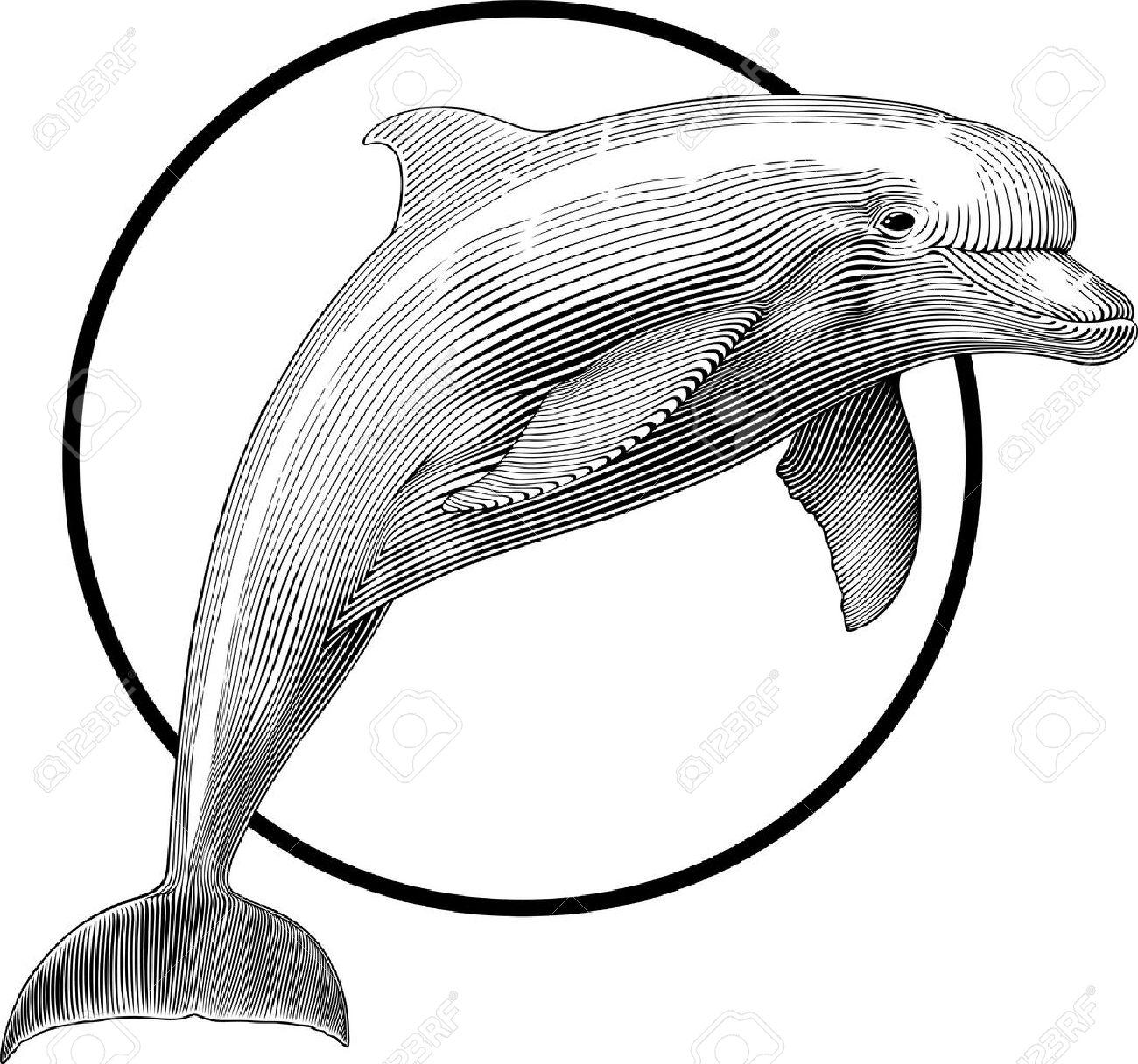 Ilustración En Blanco Y Negro De Saltar Estilo De Grabado De ...