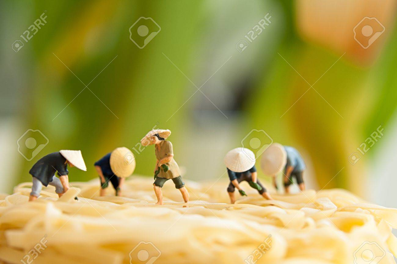 Figurine peasants on noodle field  Macro photo Stock Photo - 18000751