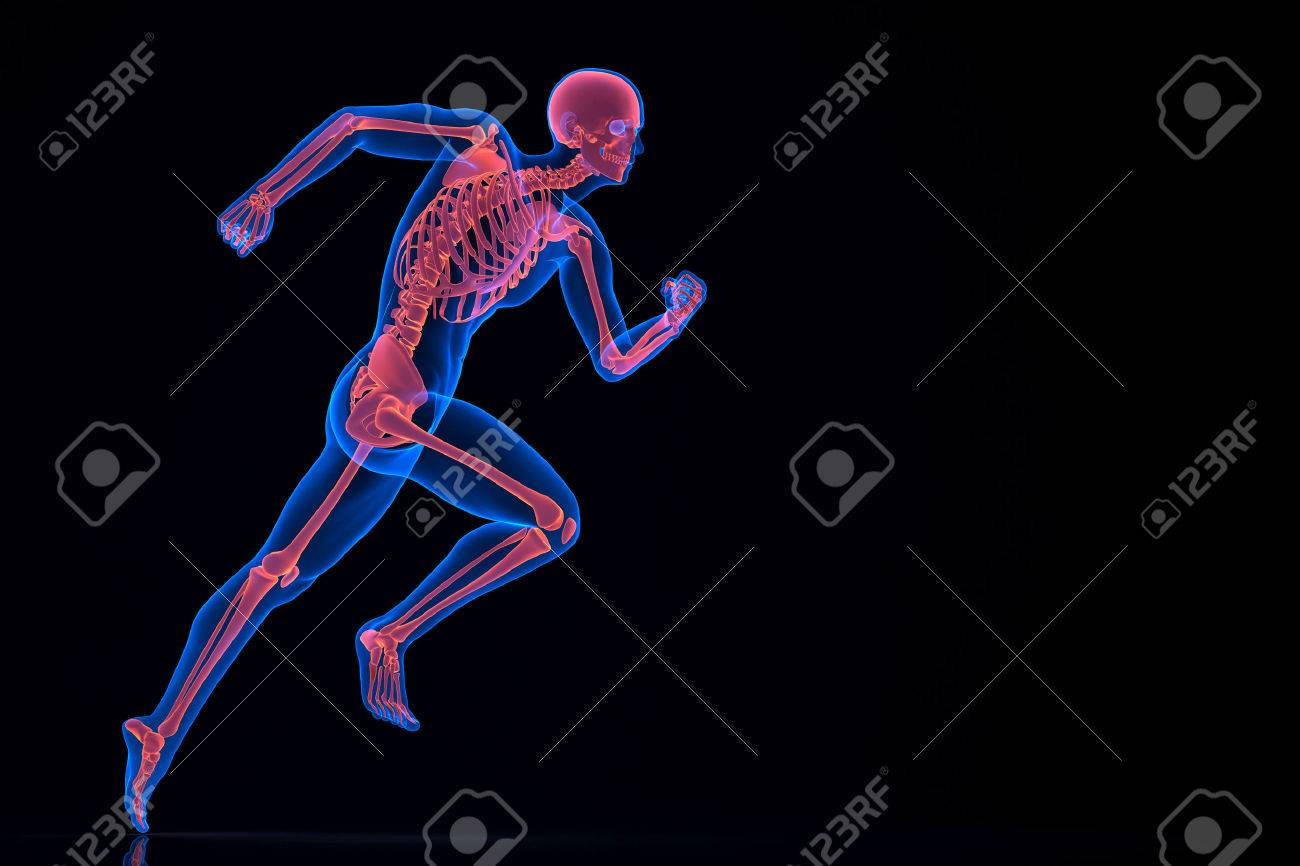 Running 3d skeleton. Contains clipping path Standard-Bild - 28219141