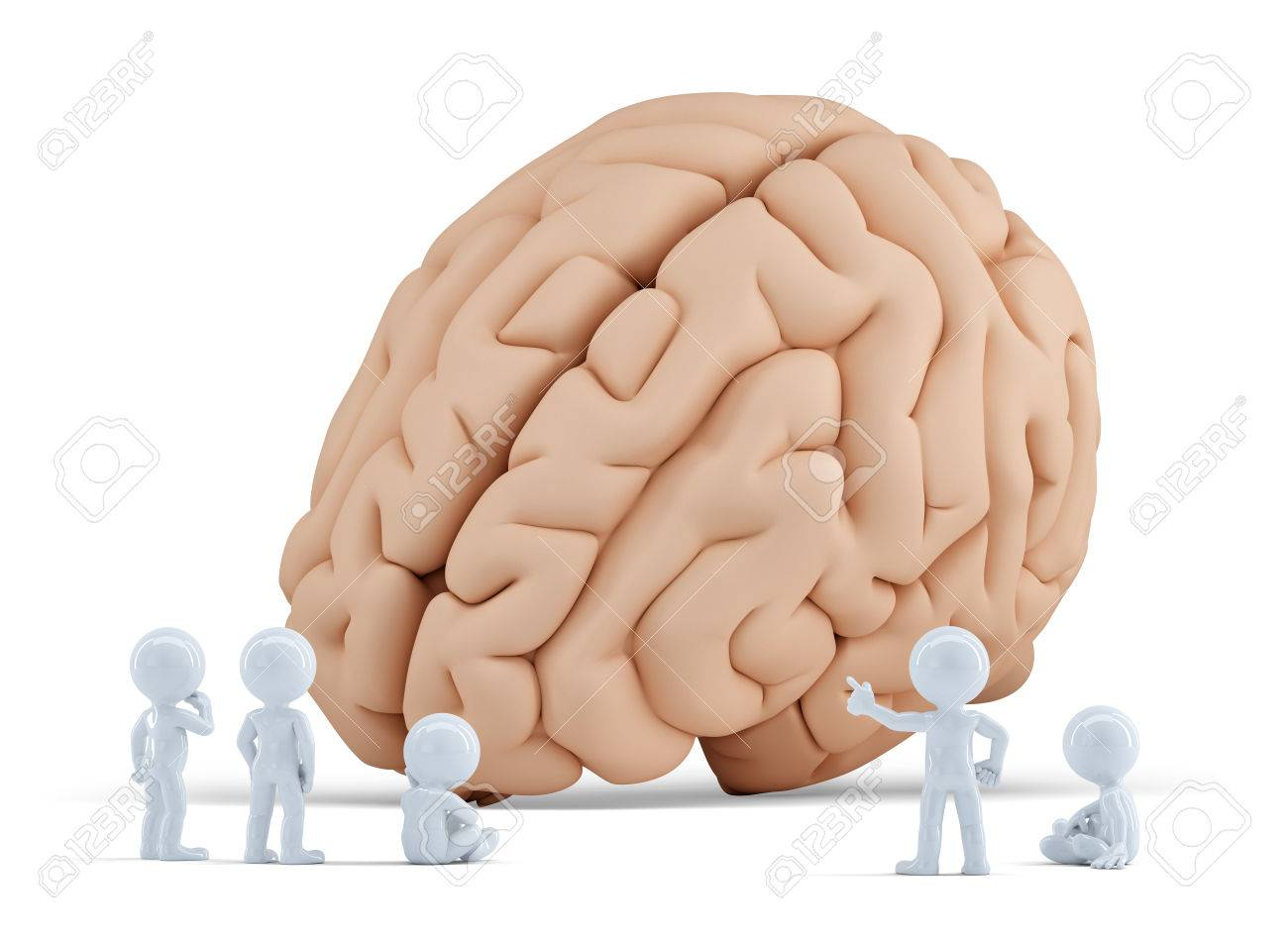 Little people arond giant brain  Isolated  Contains clipping path Standard-Bild - 30162265