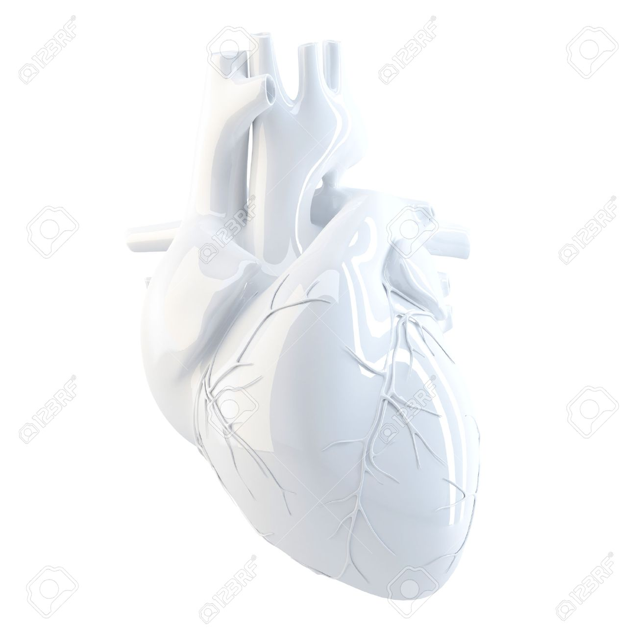 Human Heart. 3d render. Isolated over white, contains clipping path. - 33234201