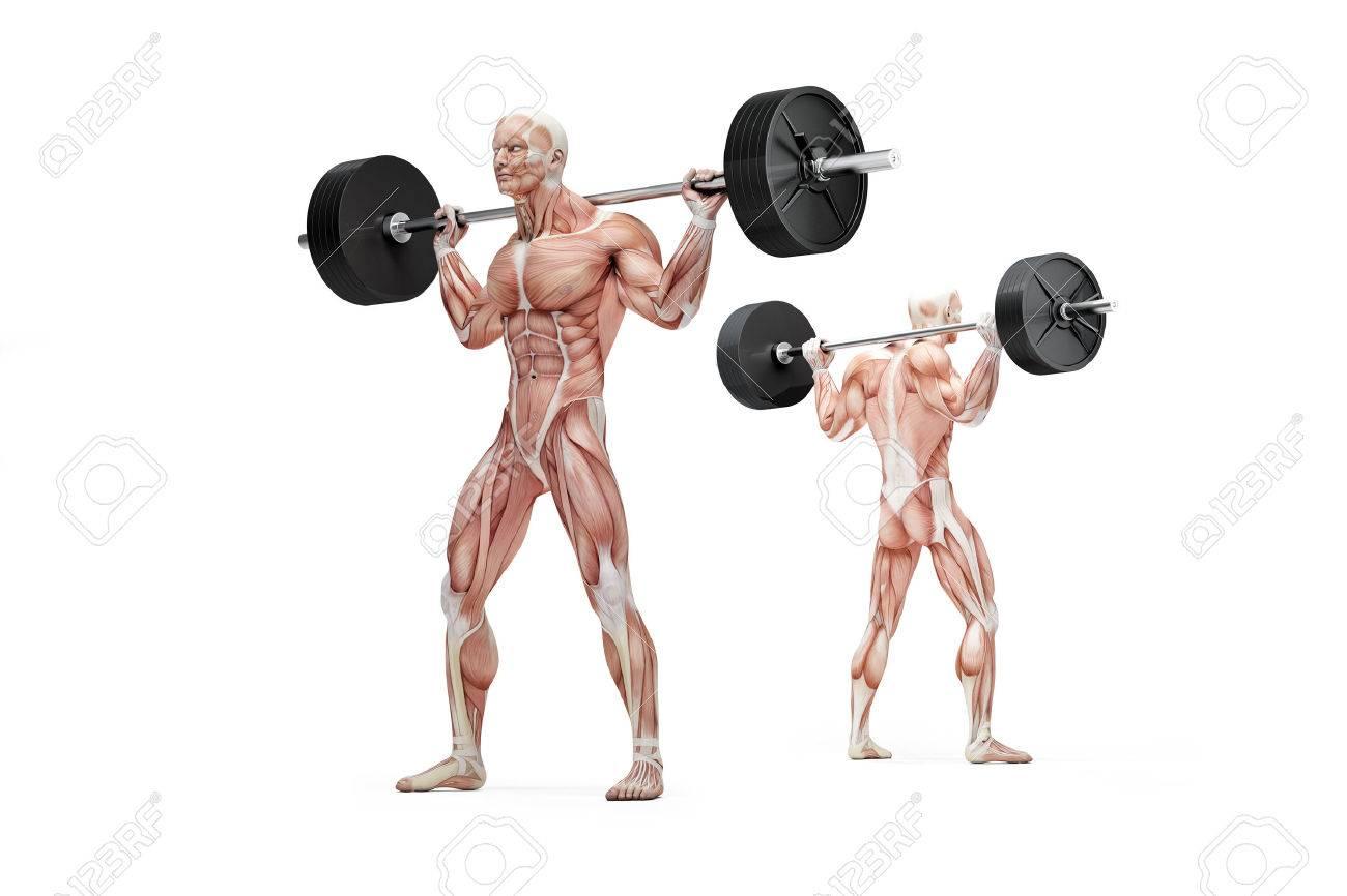 Hombre Muscular Que Sostiene Una Barra Sobre Los Hombros ...