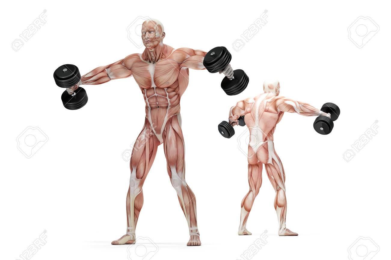 elevaciones laterales para los hombros