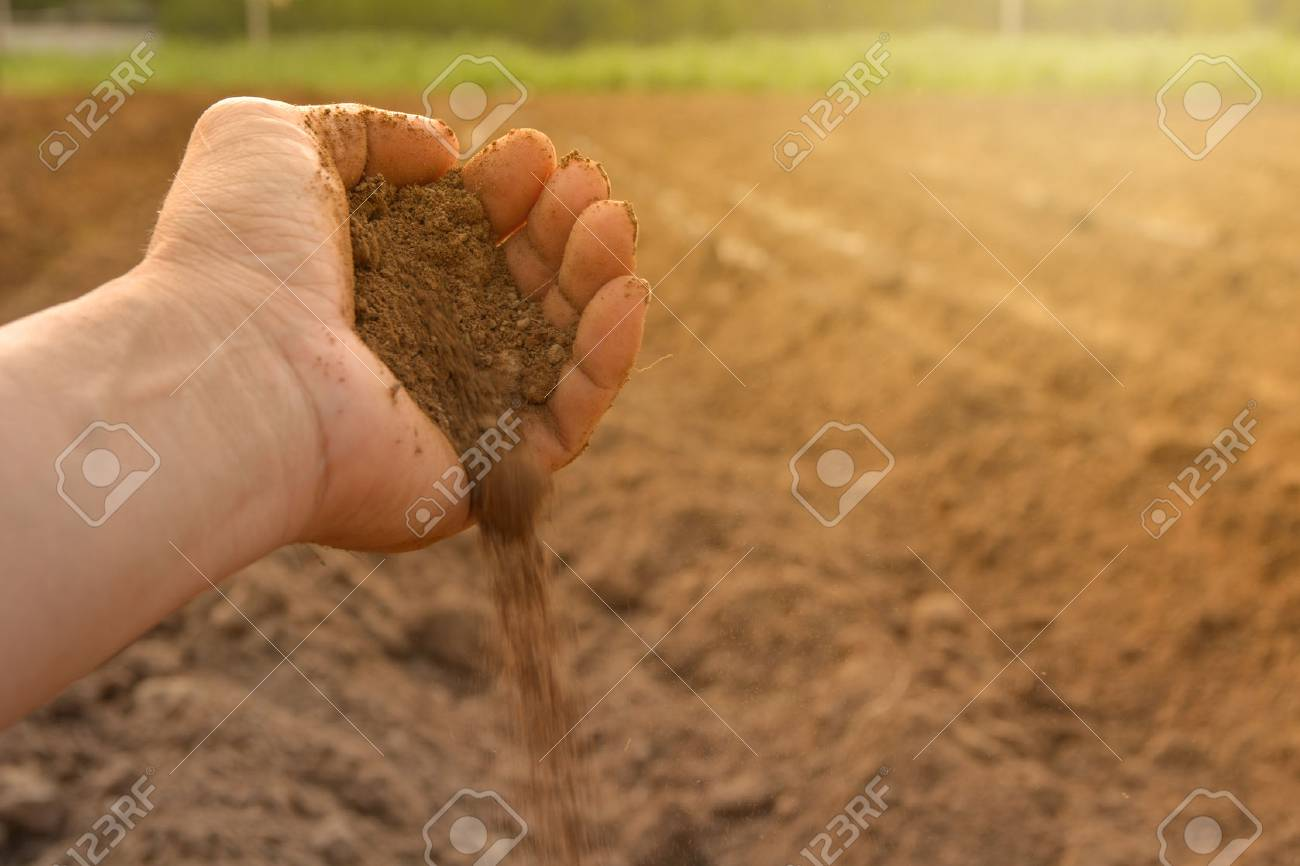 Soil in hand cultivated dirt. earth or ground with nature background. - 76756840