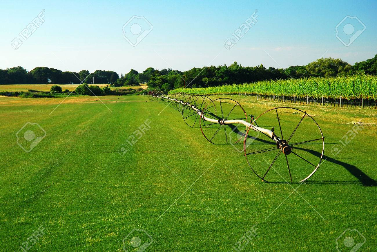 Long Island Sod Farm Stock Photo Picture And Royalty Free Image Image 66313863