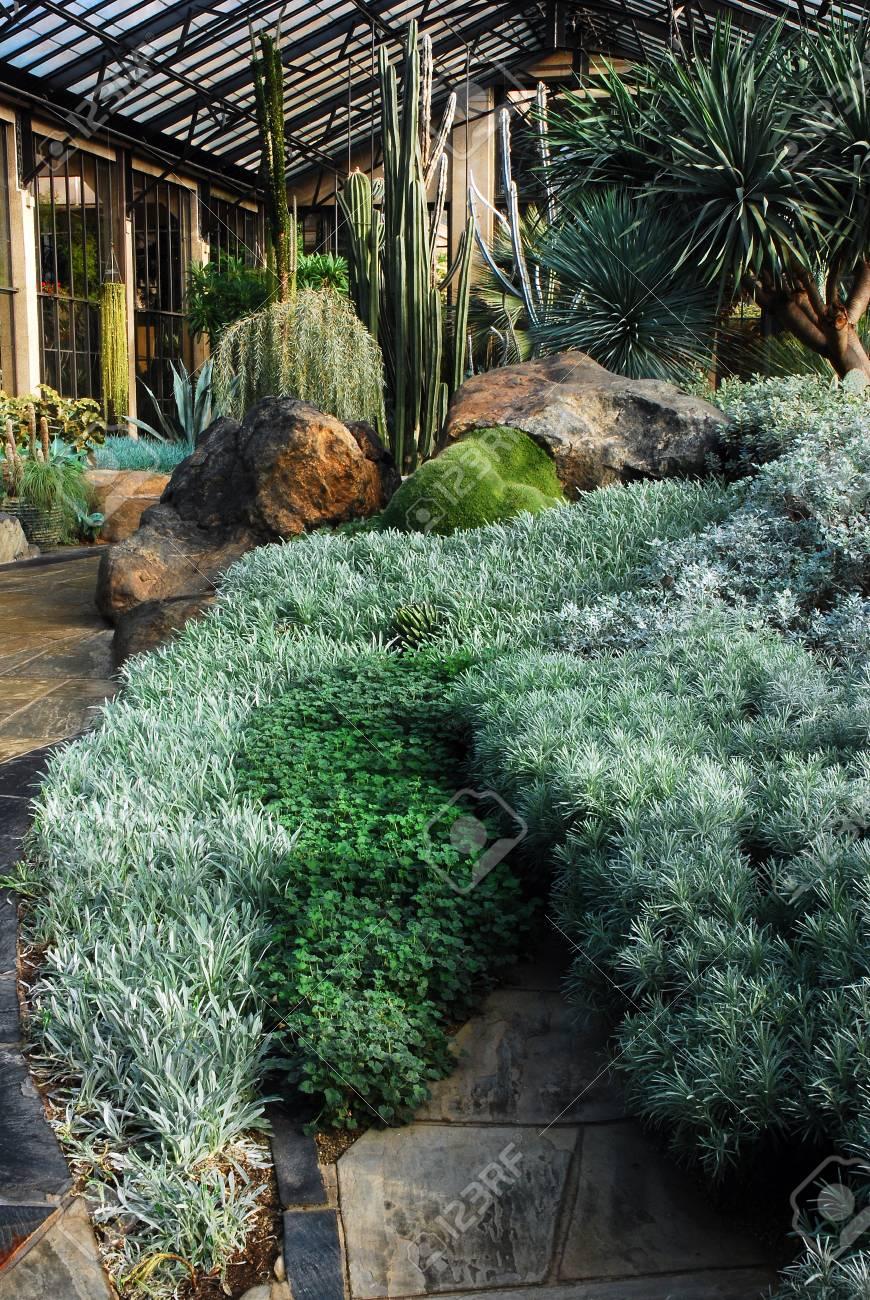 Merveilleux Cactus Display, Longwood Gardens, Near Philadelphia, PA Stock Photo    94758530