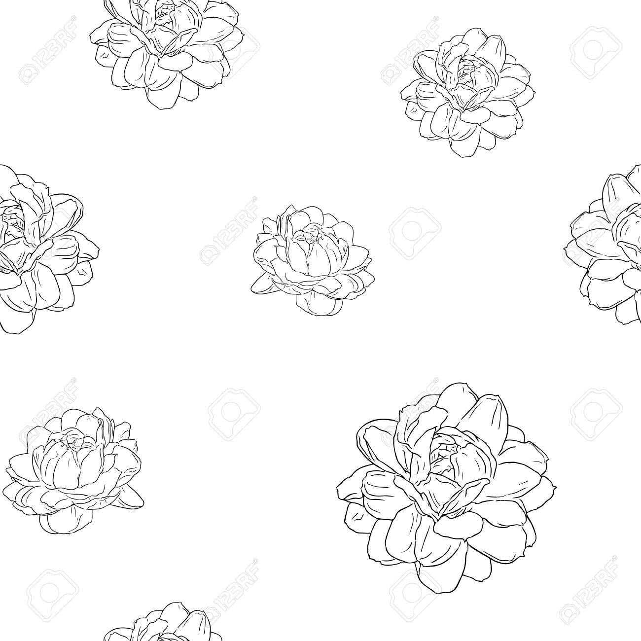 Jasmine flower use in traditional mothers day hand draw sketch seamless pattern vector stock