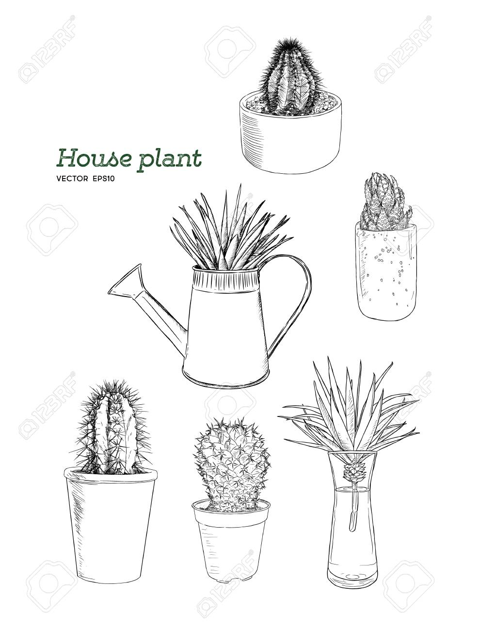 Set Of House Plant In Pot Hand Draw Sketch Vector Royalty Free Cliparts Vectors And Stock Illustration Image 92060104