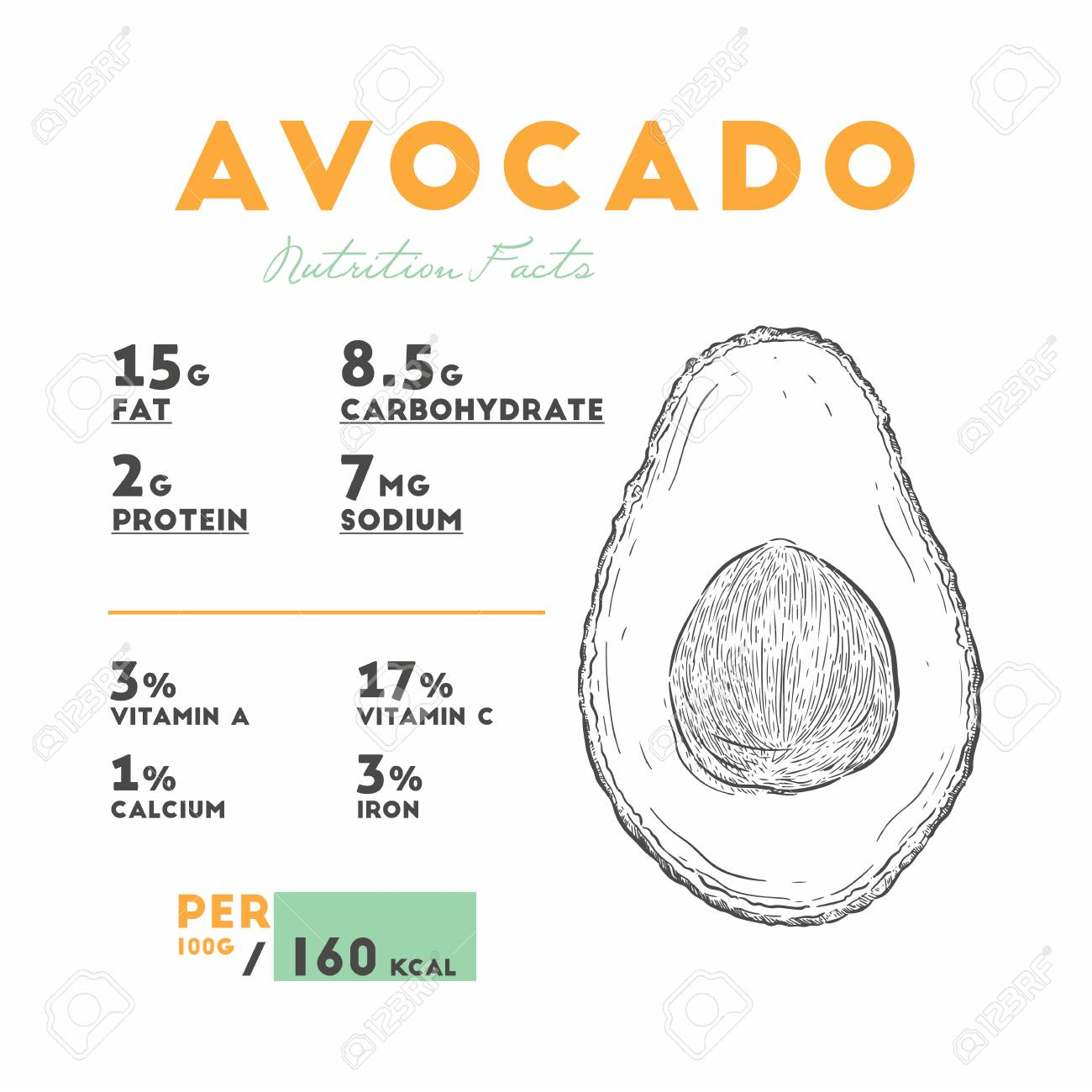 Nutrition Facts Of Avocado Hand Draw Sketch Vector Royalty Free Cliparts Vectors And Stock Illustration Image 125229362