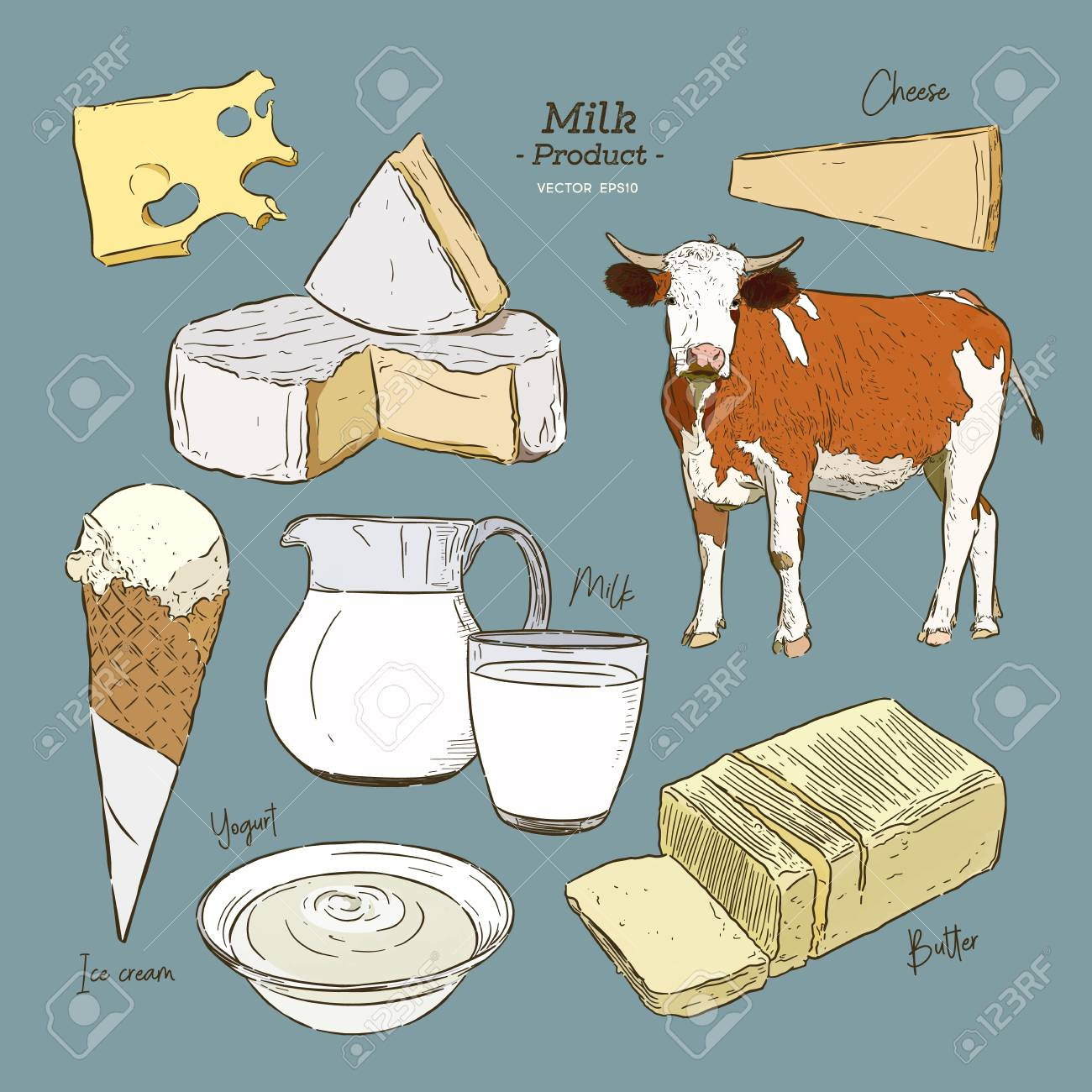 Dairy products collection  Cow, milk products, cheese , butter,