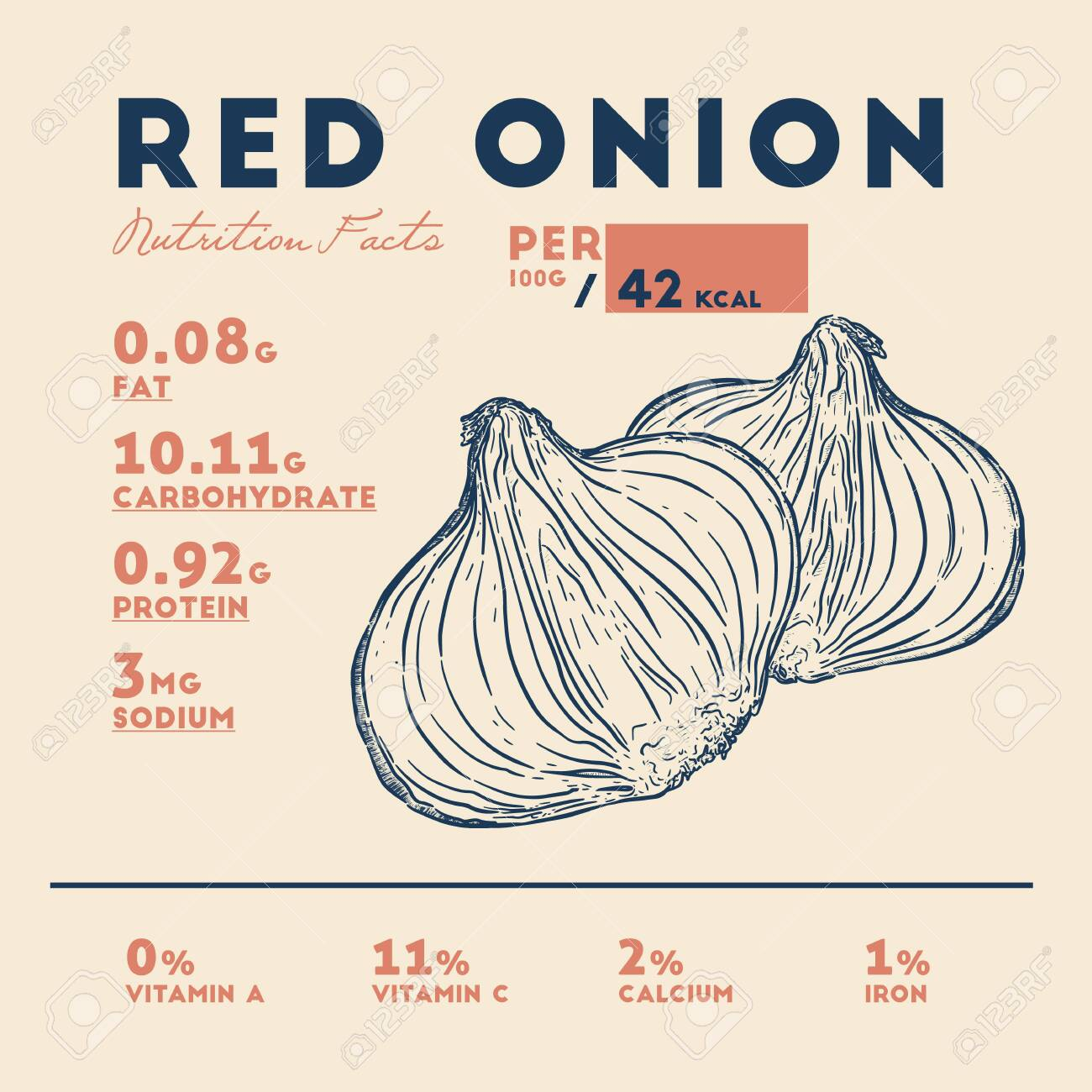 Nutrition Facts Of Red Onion Hand Draw Sketch Vector Royalty Free Cliparts Vectors And Stock Illustration Image 138700752