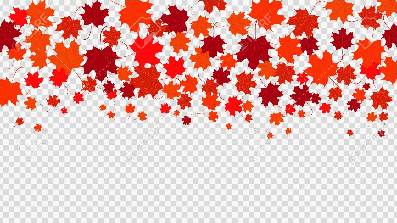 Red Maple Leaves Transparent Background Royalty Free Cliparts Vectors And Stock Illustration Image 100427008