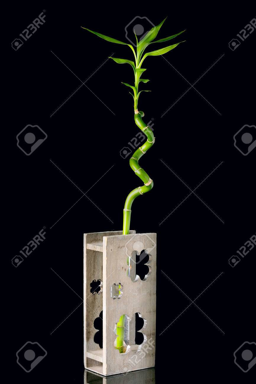 Image De Concept D Ecologie Avec Tige De Bambou Dans Un Vase En Bois