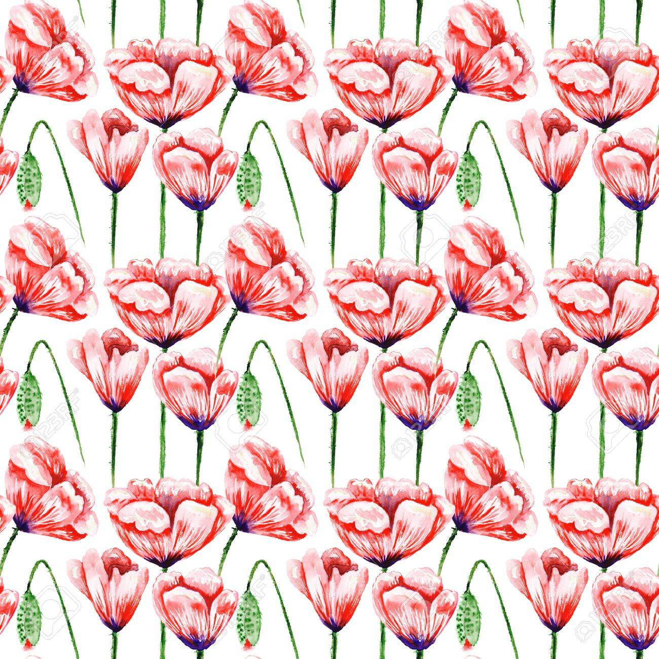 Seamless Watercolor Texture With Red Flowers Isolated On White