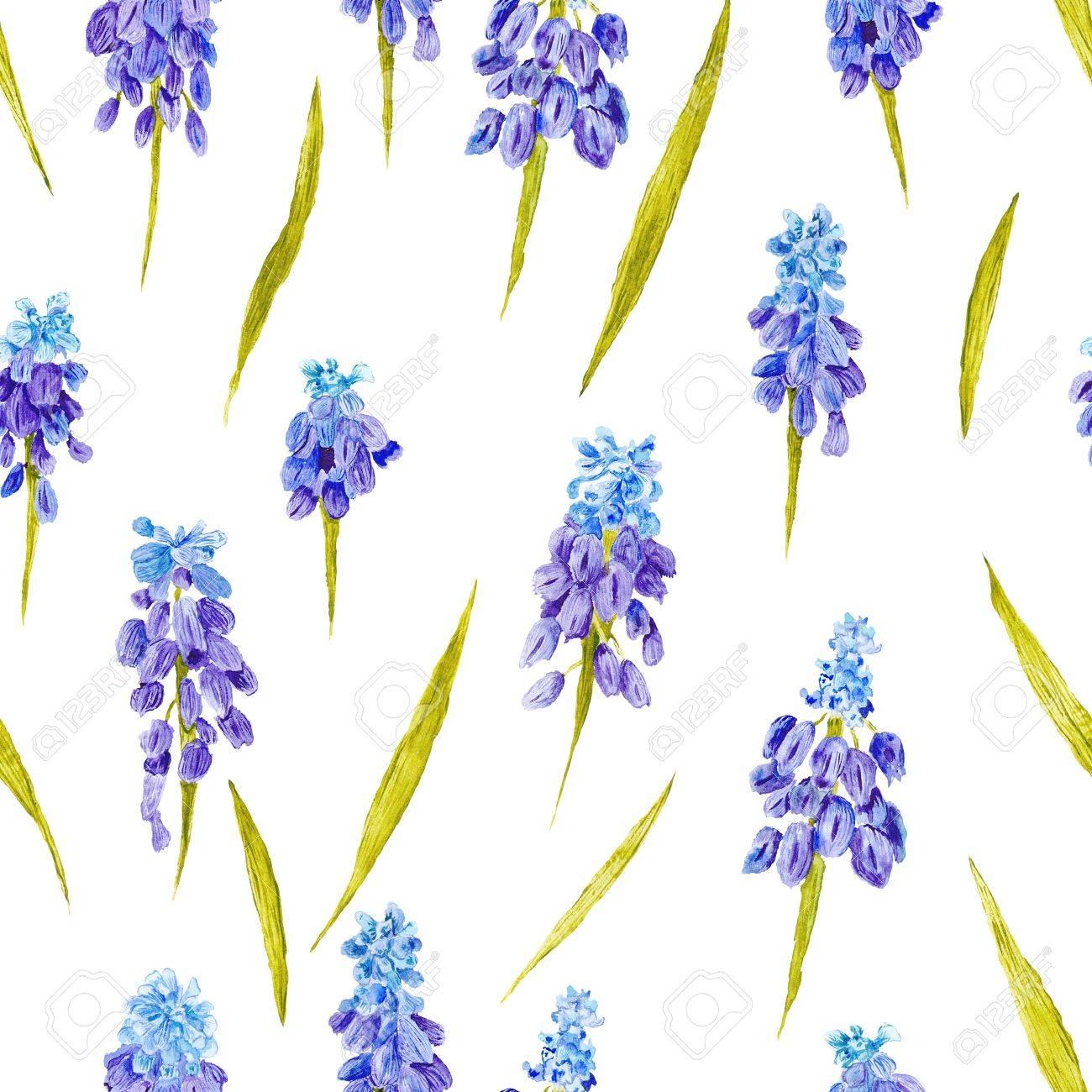 Fondo Floral Sin Fisuras Con Flores Azules Y Purpuras Muskari Fotos