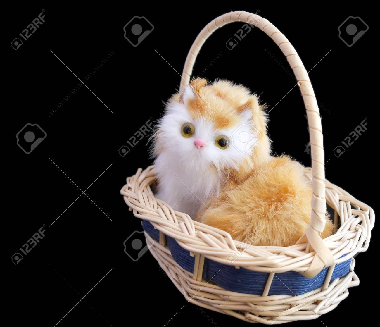 Pretty kitten in basket over black - 29791673