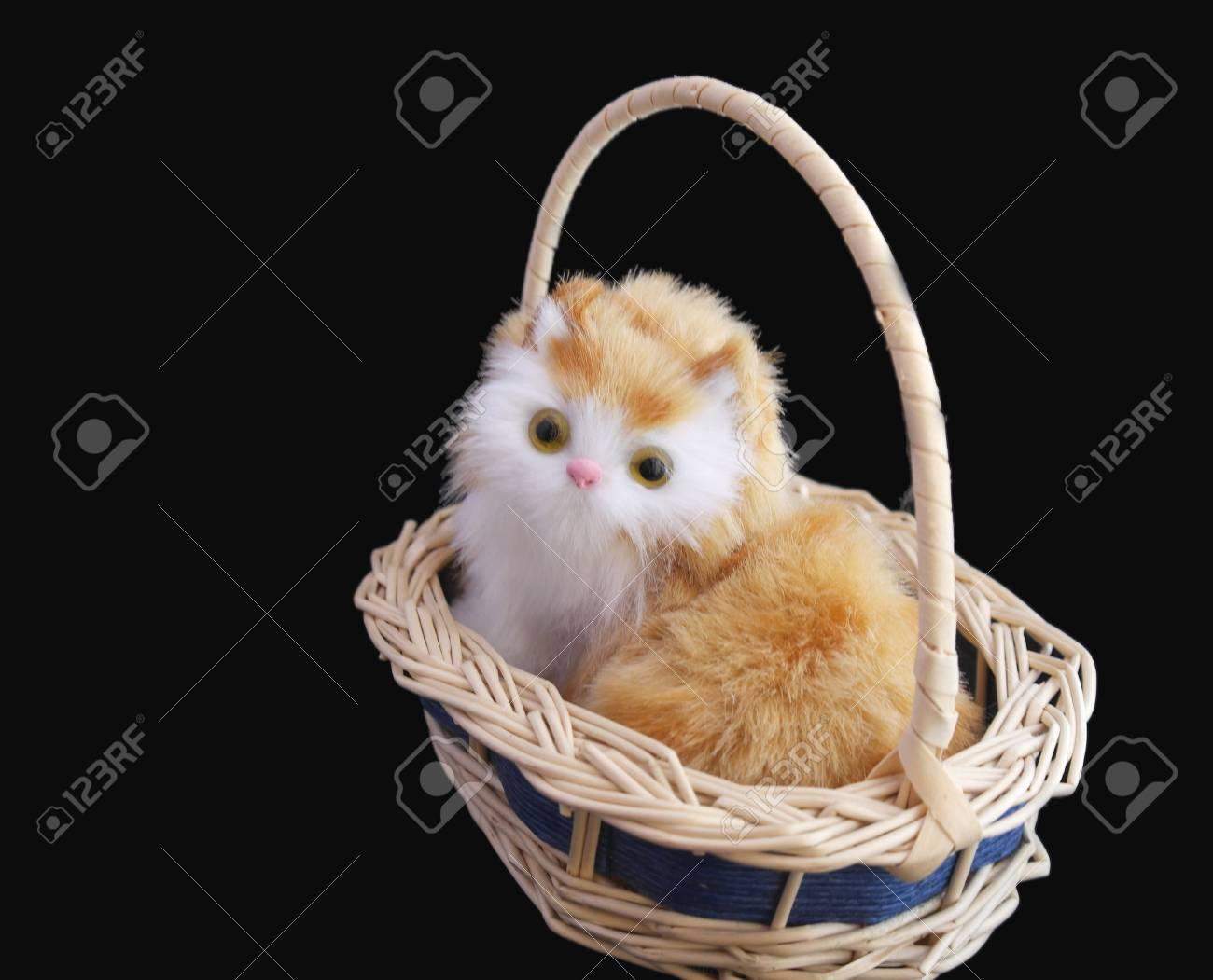 Pretty kitten in basket over black - 29791675