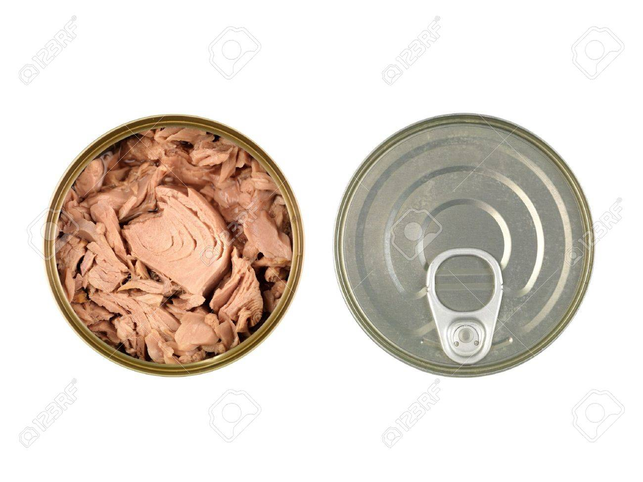 Canned tuna isolated against a white background Stock Photo - 13783927