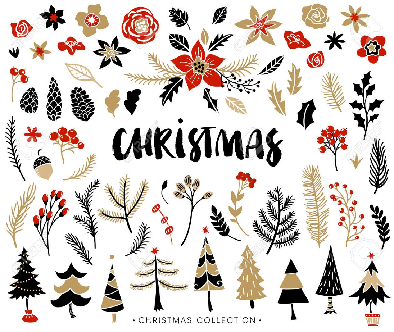 Christmas set of plants with flowers, spruce branches, leaves and berries. Christmas trees. Handwritten modern brush lettering. Hand drawn design elements. - 47968955