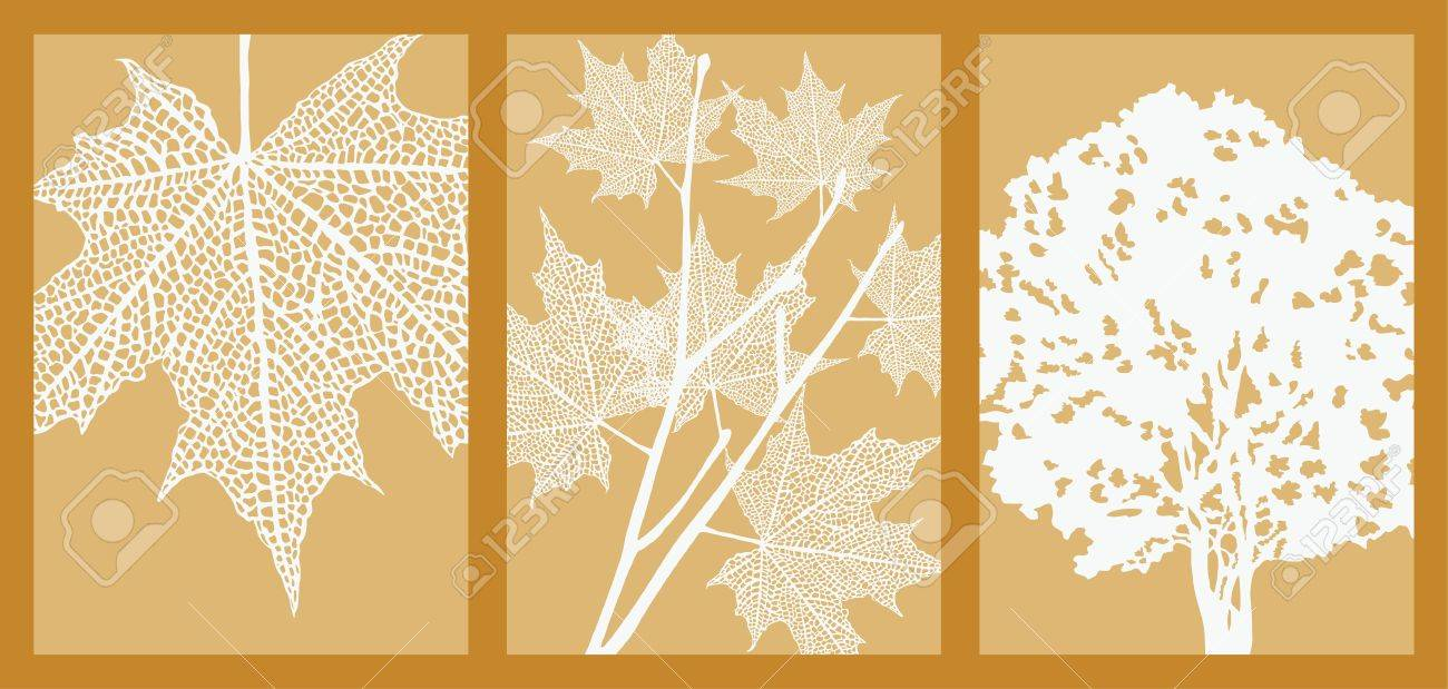 Silhouettes of maple leaf, branch and tree. Picture with Clipping Mask. Stock Vector - 9699164