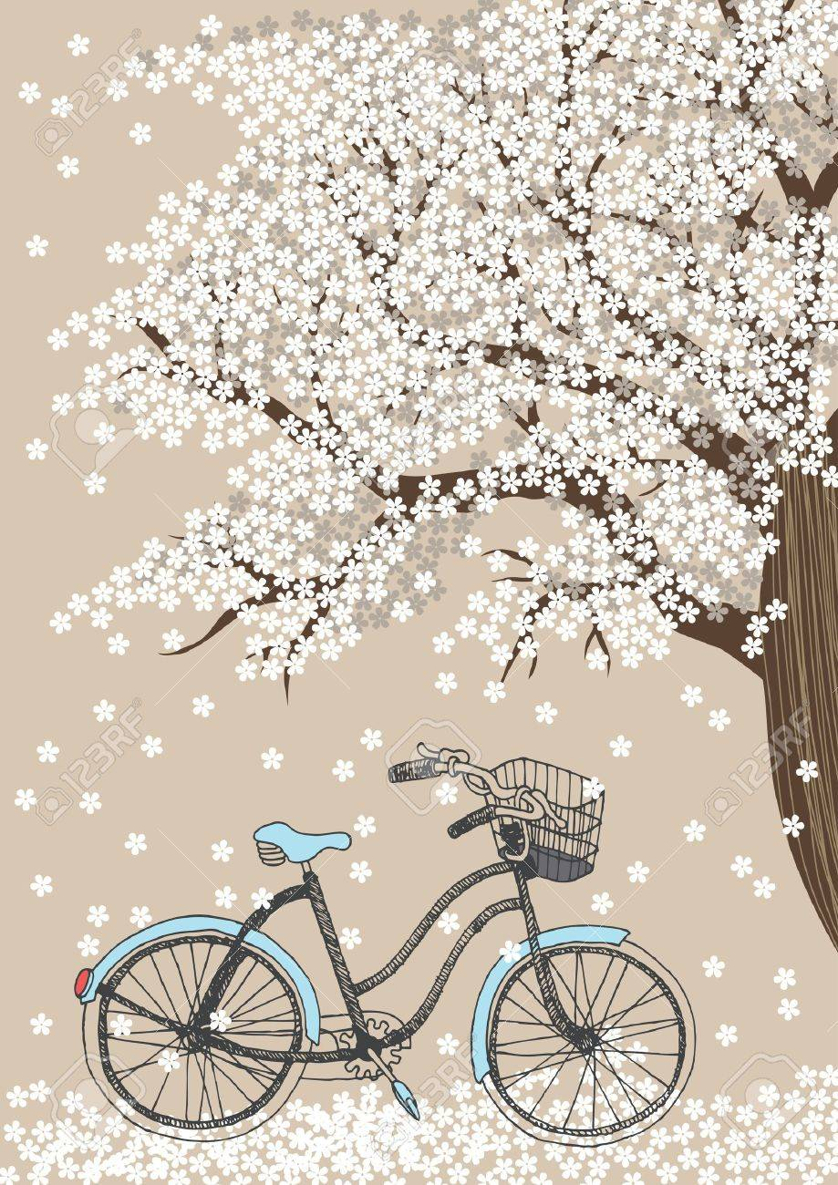 Bicycle and white blooming tree Stock Vector - 12940721