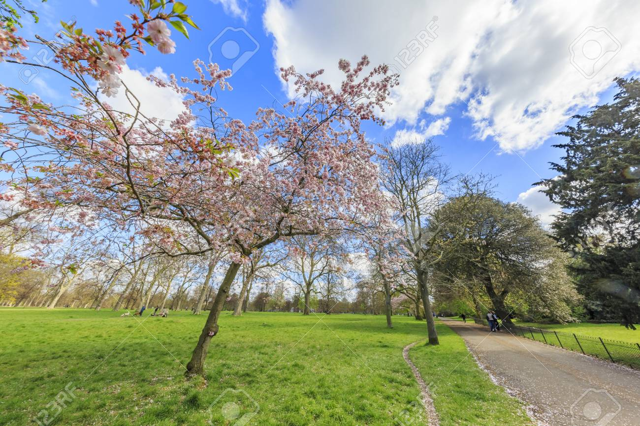 Beautiful Landscape Around Hyde Park London United Kingdom Stock Photo Picture And Royalty Free Image Image 56463386