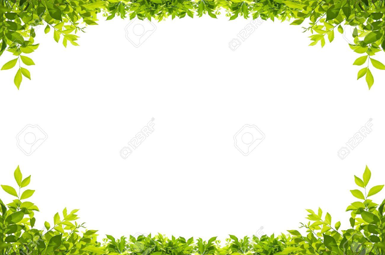 Garden Border Background RoyaltyFree Stock Photo Download Gardening A