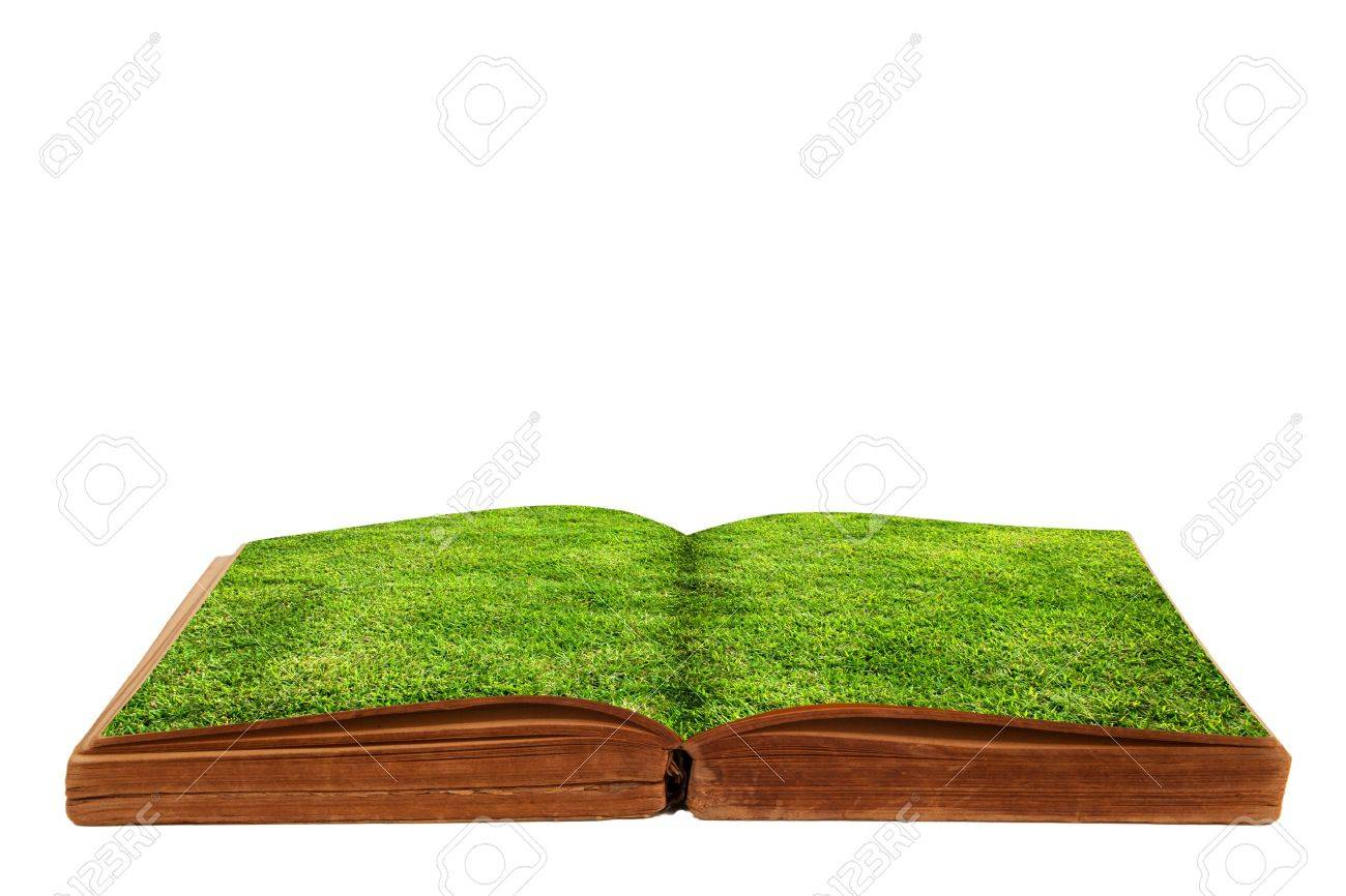 Opened a book with green grass - 17066356