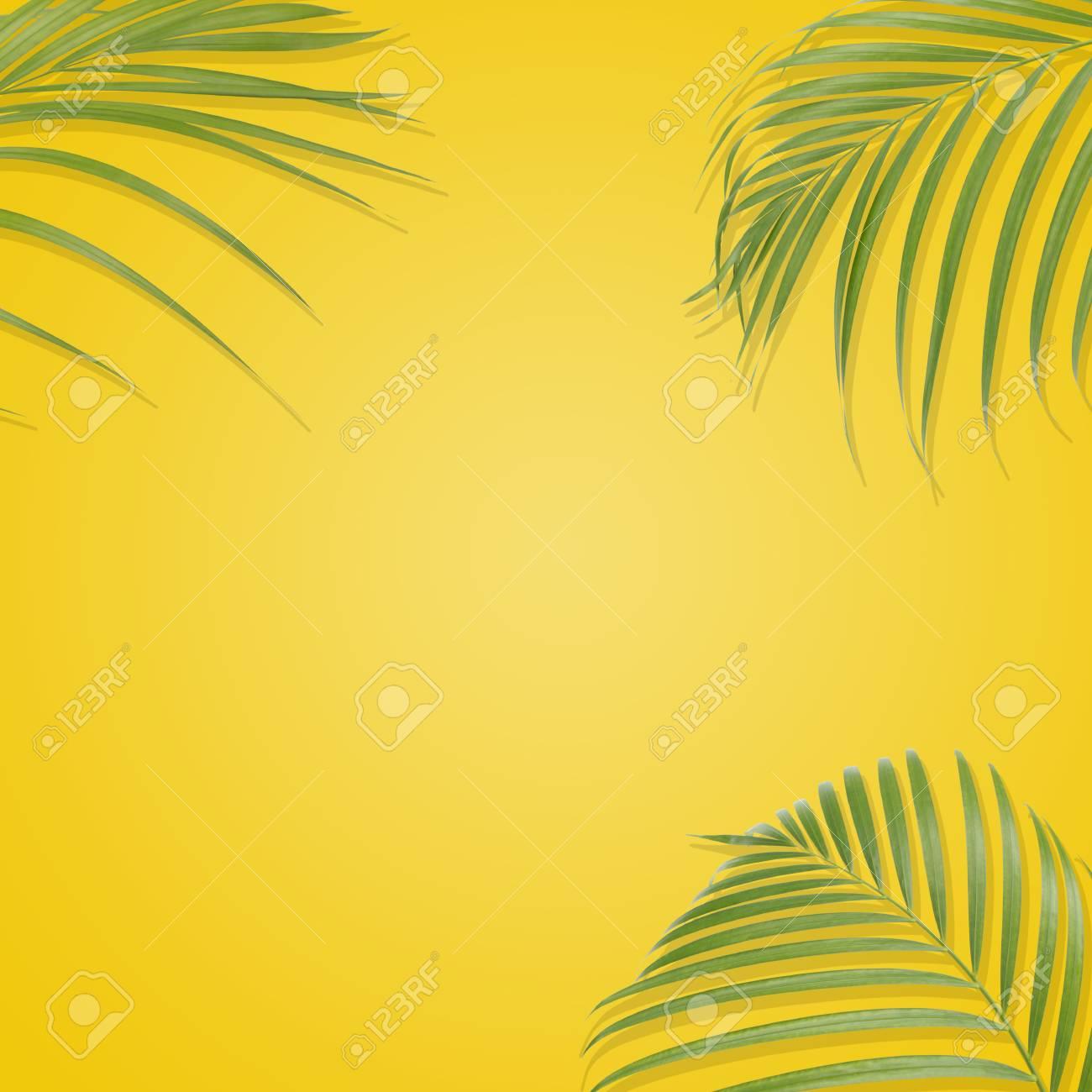 黄色の背景に熱帯のヤシを葉します 最小限の自然 夏のスタイル