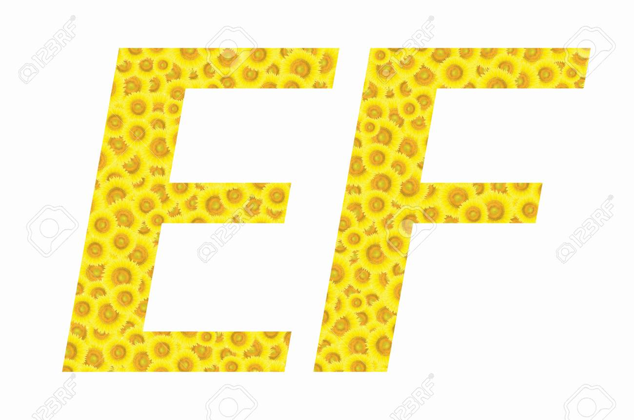 E And F Sunflower Text On Isolated Backgrounds Stock Photo Picture