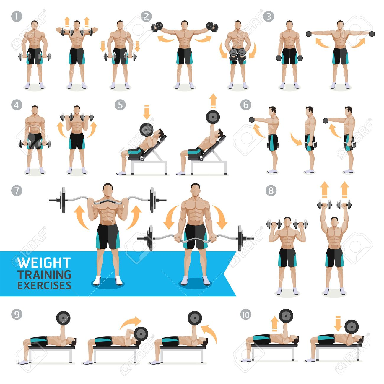 weight training exam Weight training is a great way to achieve strength and overall body fitness there are two main weight training for a specific sport involves strengthening specific muscle groups targeted for the.