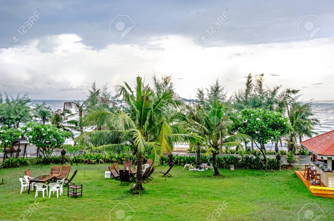 Green Garden Beside The Beach Stock Photo, Picture And Royalty Free ...