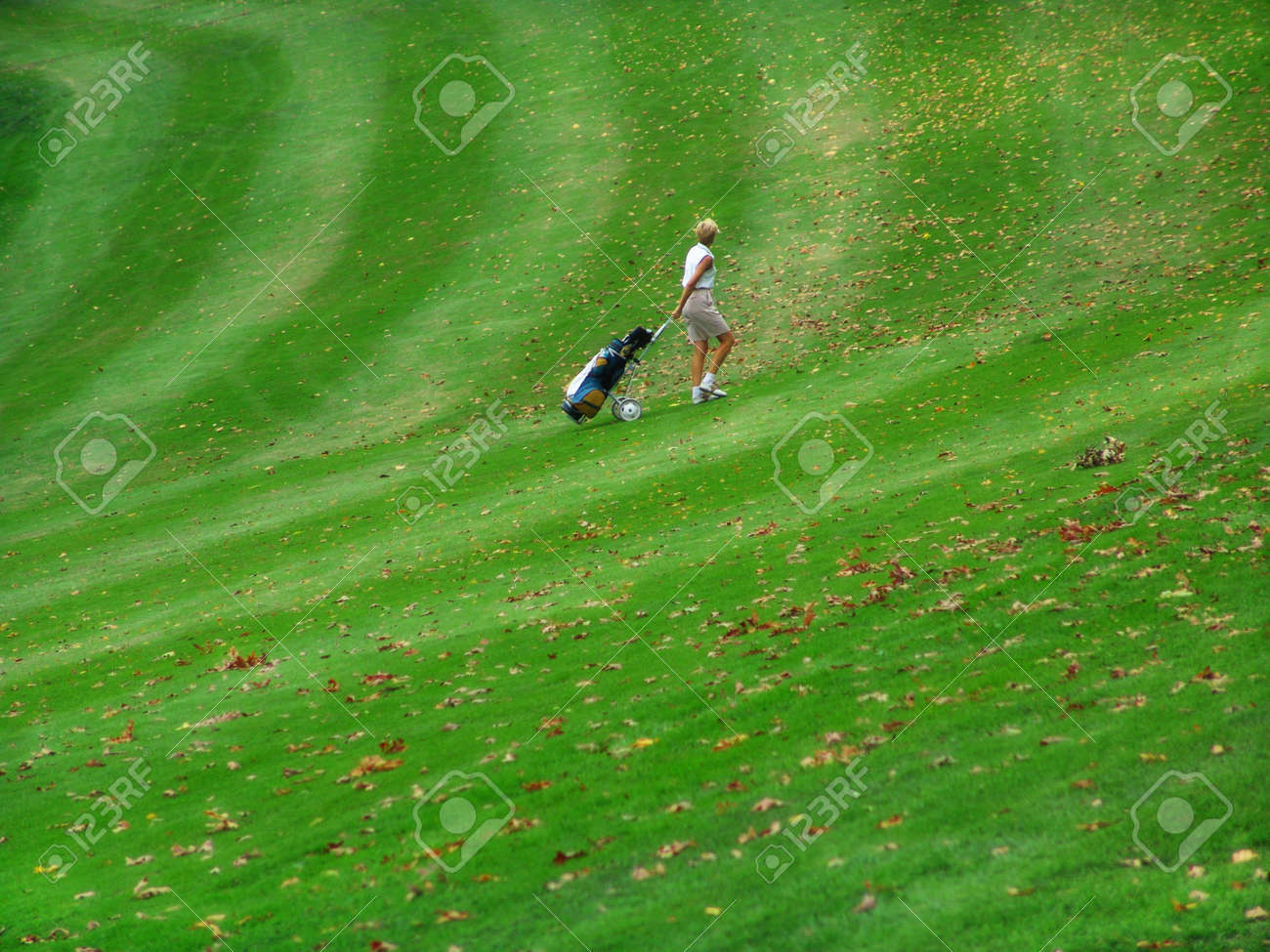 woman on golf course pulling bag Stock Photo - 339489