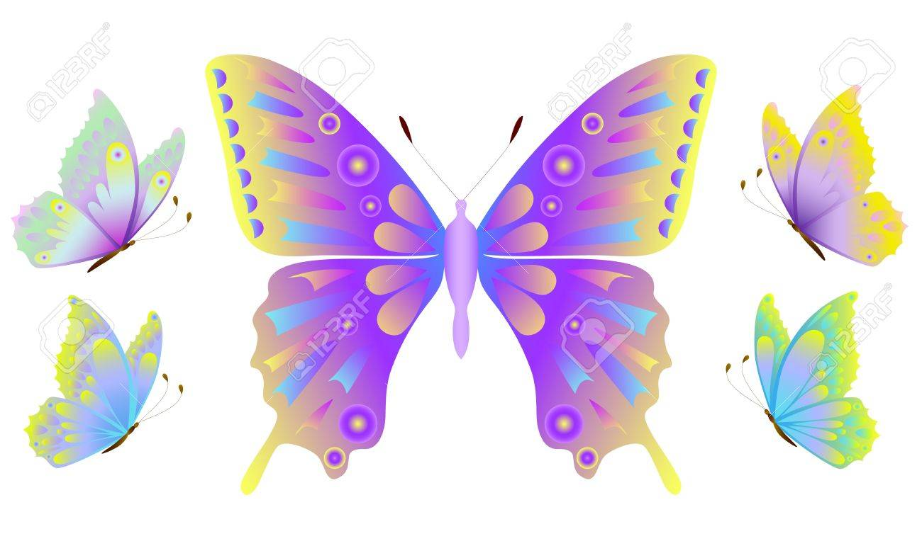 Illustration of butterfly isolated on black background Stock Vector - 10790062