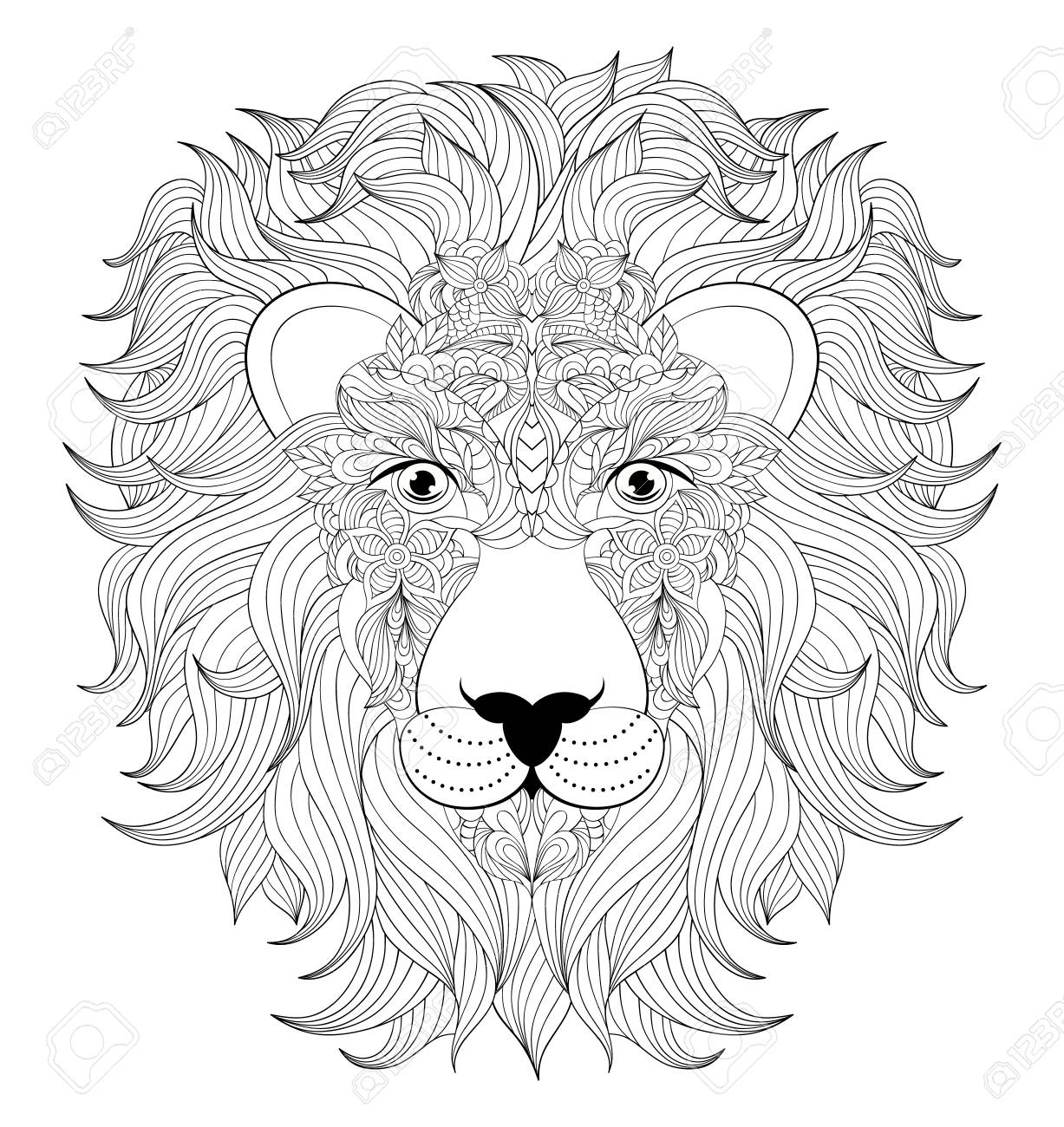 Illustration De La Tête De Lion Coloré Sur Fond Blanc Coloriage Pour Les Adultes
