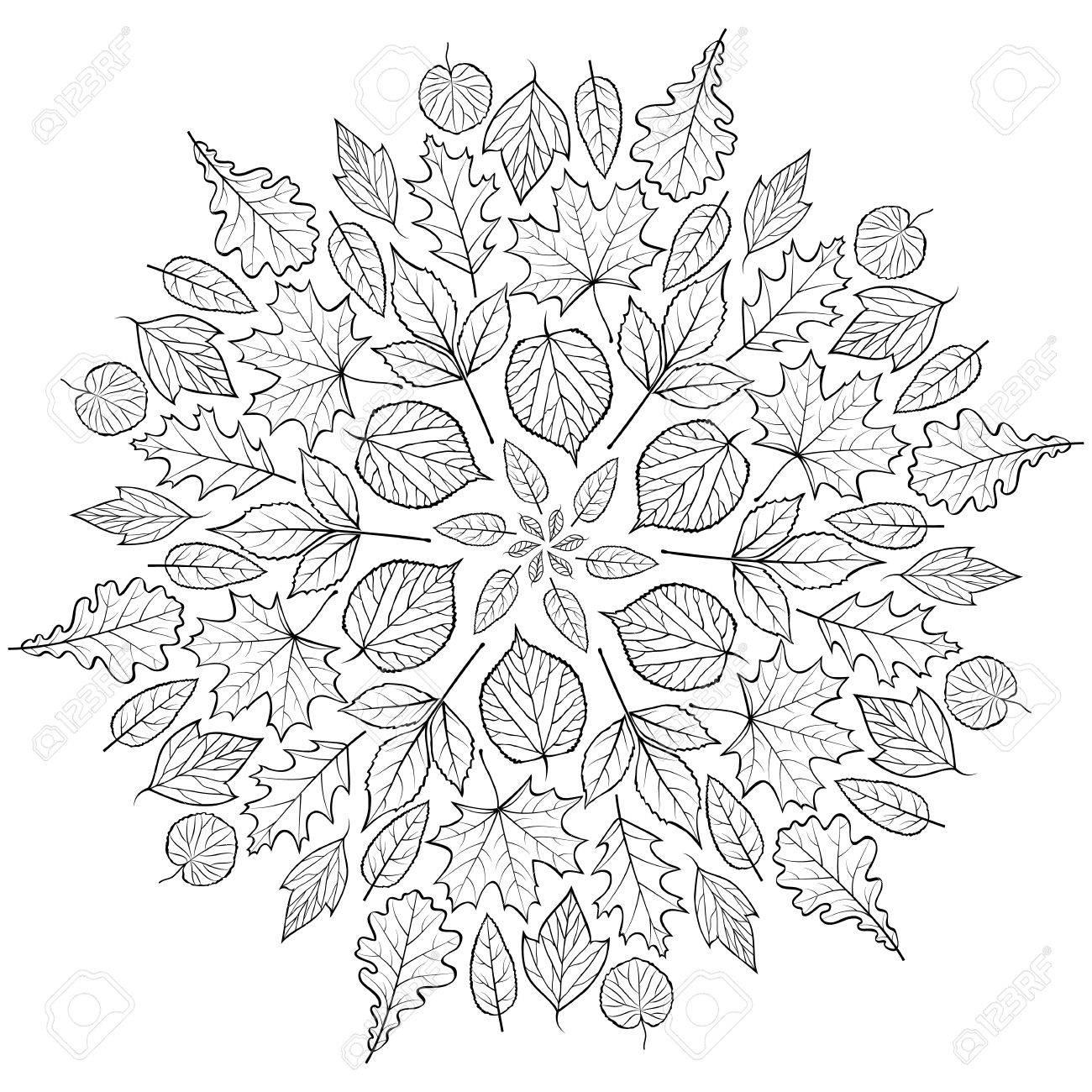 Herbst Mandala Mit Herbstlaub Auf Weißem Hintergrund . Malvorlage