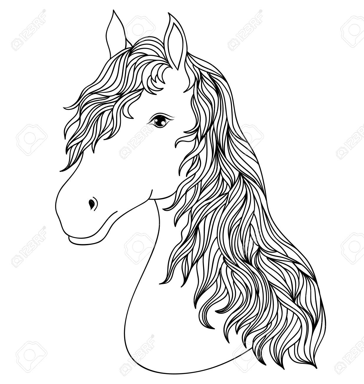Hand Drawn Head Of Horse On White Background.Coloring Page For ...